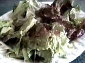 Red Leaf Lettuce Salad With Garlic Vinegar Dressing